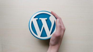 Photo of WordPress Nedir?